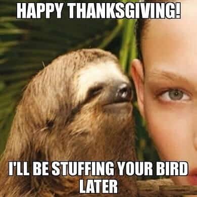 20 Happy Thanksgiving Funny Memes