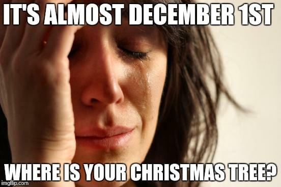 17 Best December 1st Memes