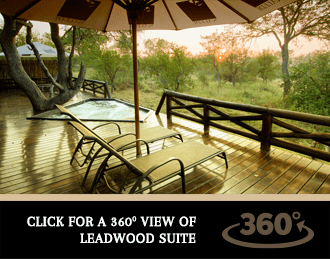 Get a 360' View of Naledi Game Lodge's Luxury Accommodation