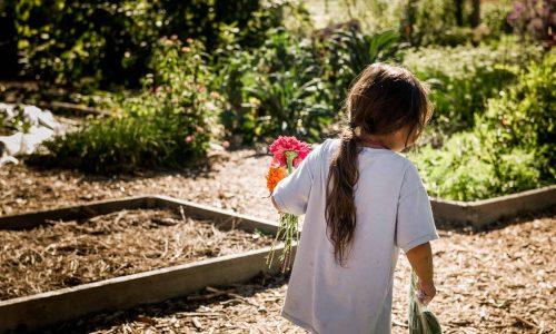 A young girl walks through a garden holding flowers