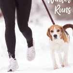 femaler runner in cold weather with dog