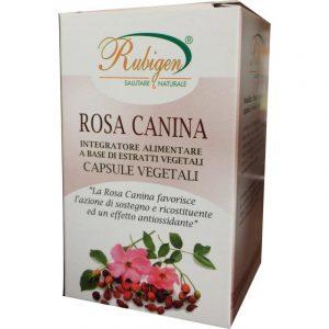 Rosa Canina Capsule