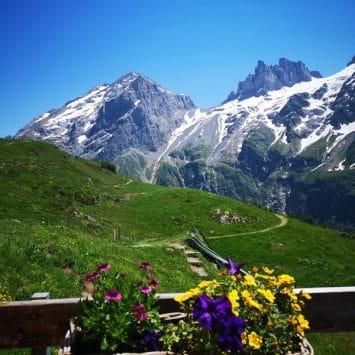 Sommer in der Schweiz (De)