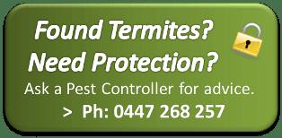 Termite Protection Brisbane
