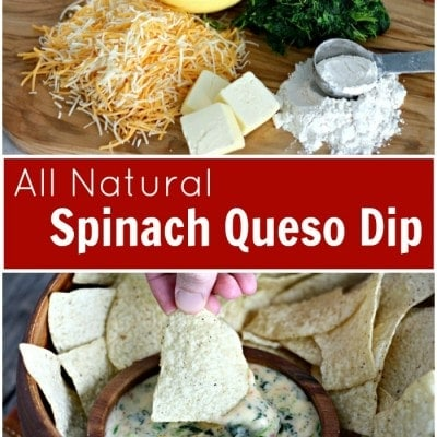 All Natural Queso Dip