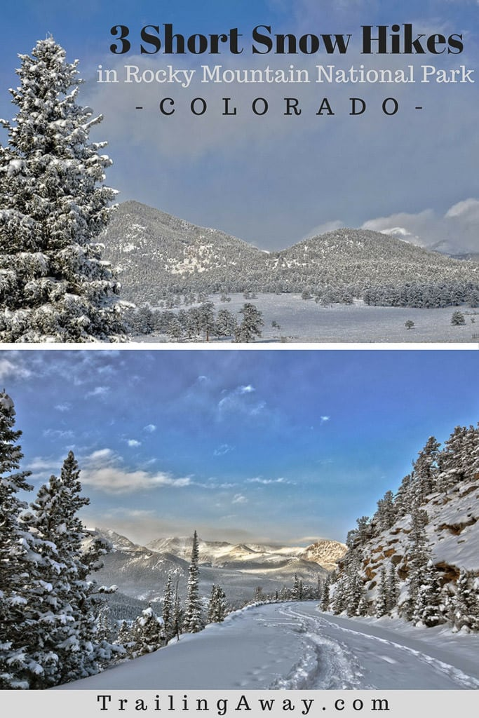 Looking for short snow hikes in Rocky Mountain National Park for a leisurely snowshoe or hiking adventure? These three trails are great for beginners, or kids, and have great views. #rockymountainnationalpark #colorado #mountains #snowshoe #estespark