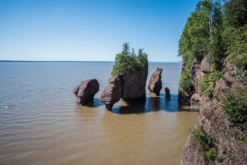 High tide at Hopewell Rocks, can't even see the muddy ground