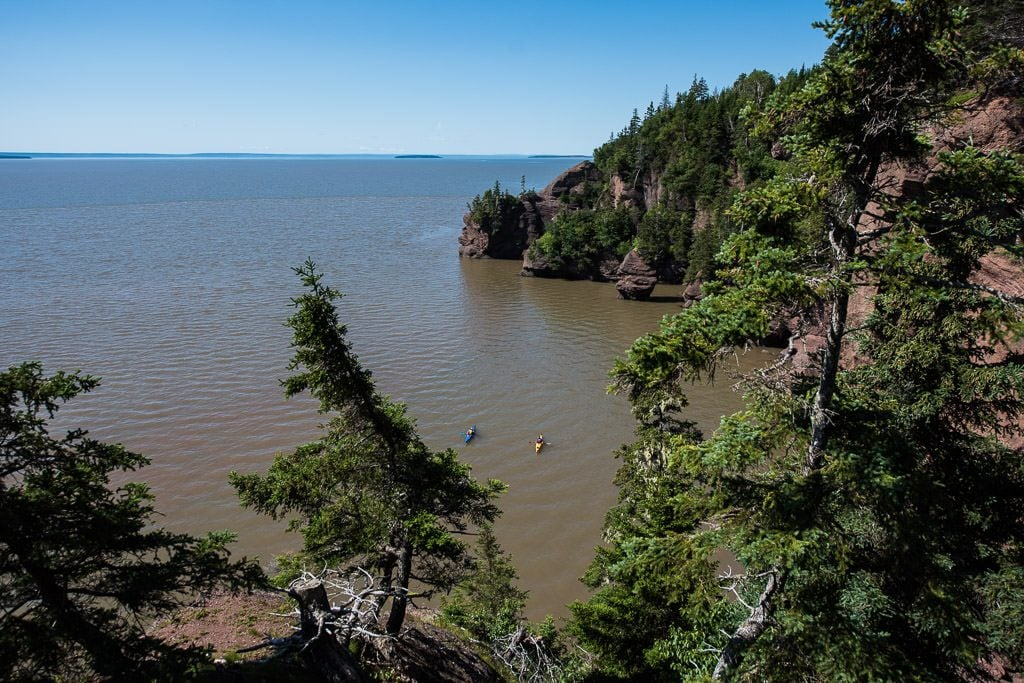 Kayakers exploring the hopewell rocks area during high tide