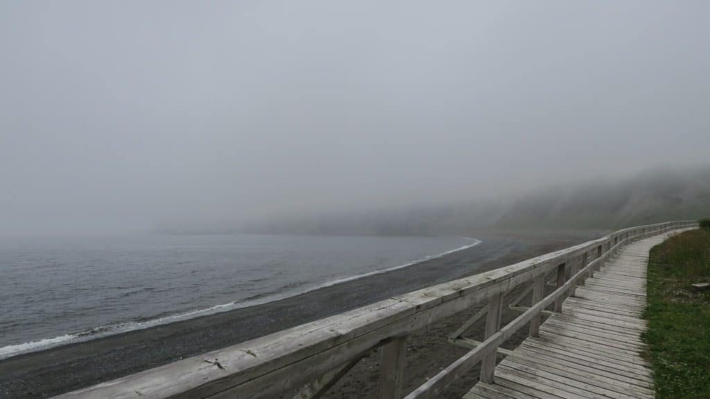 Fog over the beach in Trout River