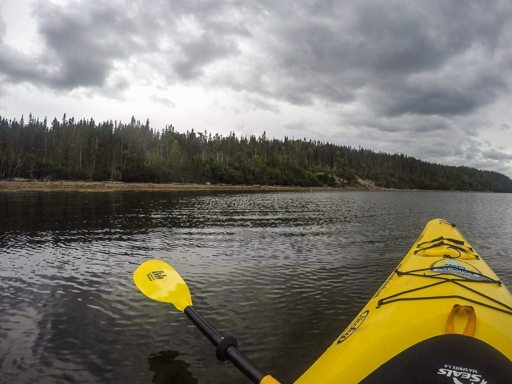 Ocean Kayak and paddle in Terra Nova