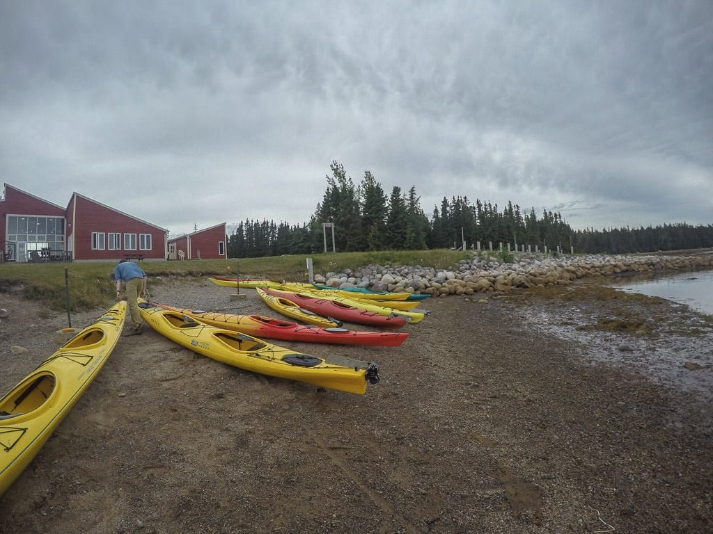 Kayaks on the shoreline near the Terra Nova Visitor's Center