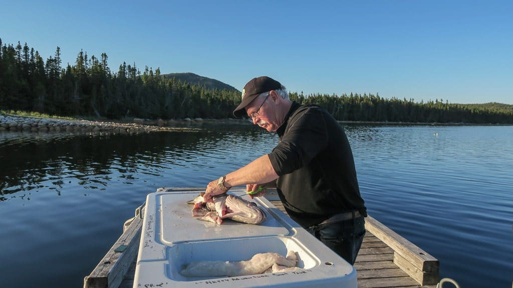 Chuck filleting some of the fresh caught Cod while fishing in Newfoundland