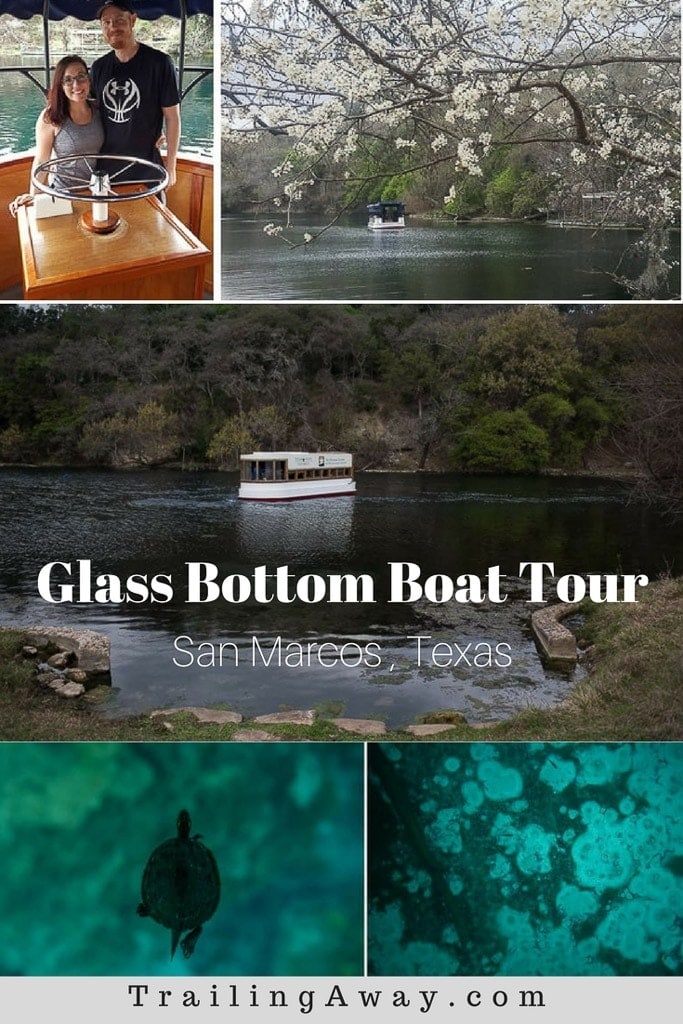 The historic San Marcos Glass Bottom Boat tour is a great way to learn about & explore the clear waters of Spring Lake. It is a Texas Hill Country must-see! #texas #hillcountry #springs #sanmarcos #glassbottomboat
