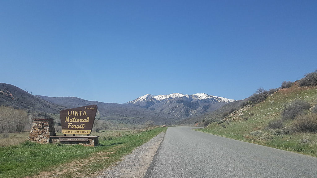 Sign on the side of the road for uinta NAtional Forest with the Unita mountains