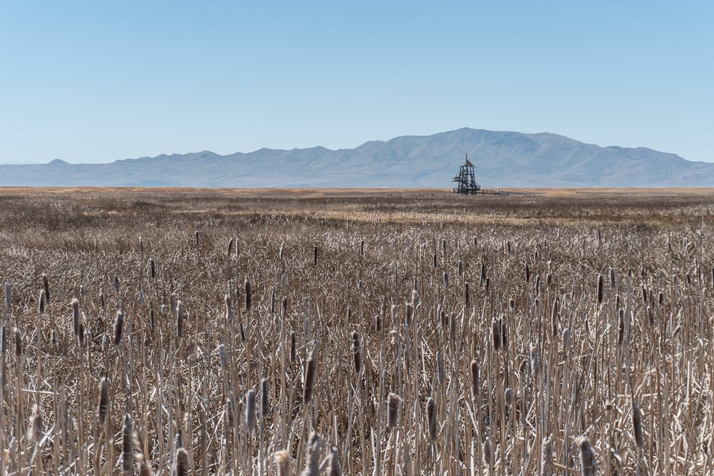 The tower off in the distance with mountains behind it at the Great Salt Lake Shorelands Preserve