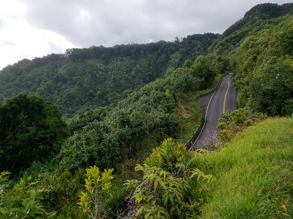 Road to Hana with lush green tree's growing on both sides