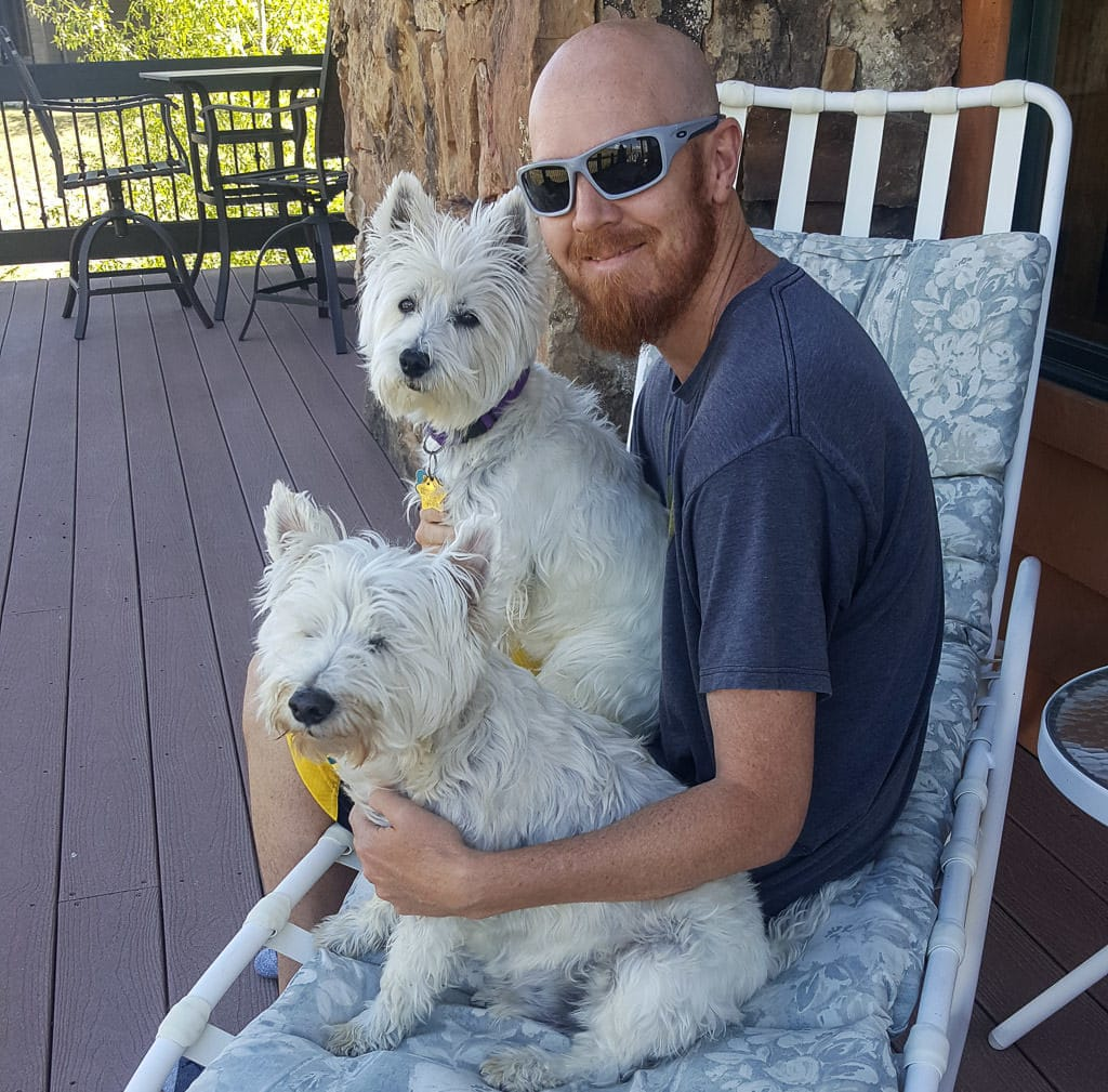Buddy posing with two sweet westie dogs while pet sitting in Colorado