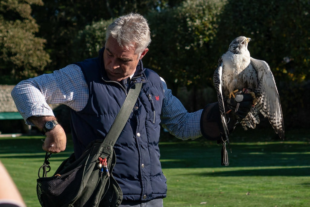 Dunrobin Castle Falconry Demonstration Falconer with a large white falcon on his arm