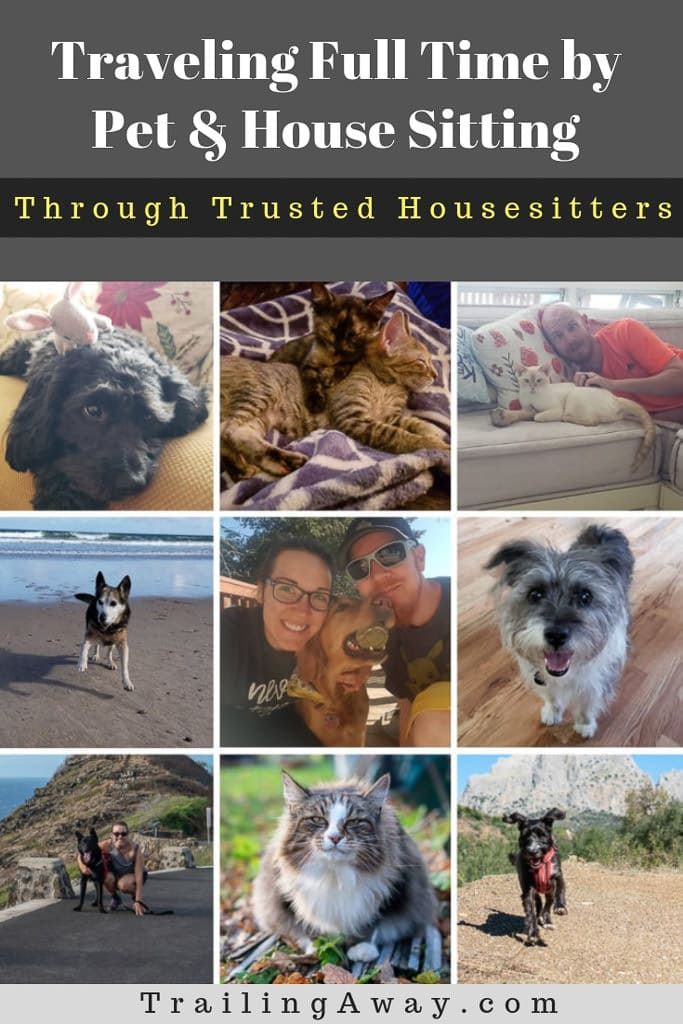 Traveling on a budget while getting to make adorable fluffy friends by pet and house sitting through Trusted Housesitters has been life-changing. Read why! #petsitting #housesitting #budgettravel #trustedhousesitters #pets