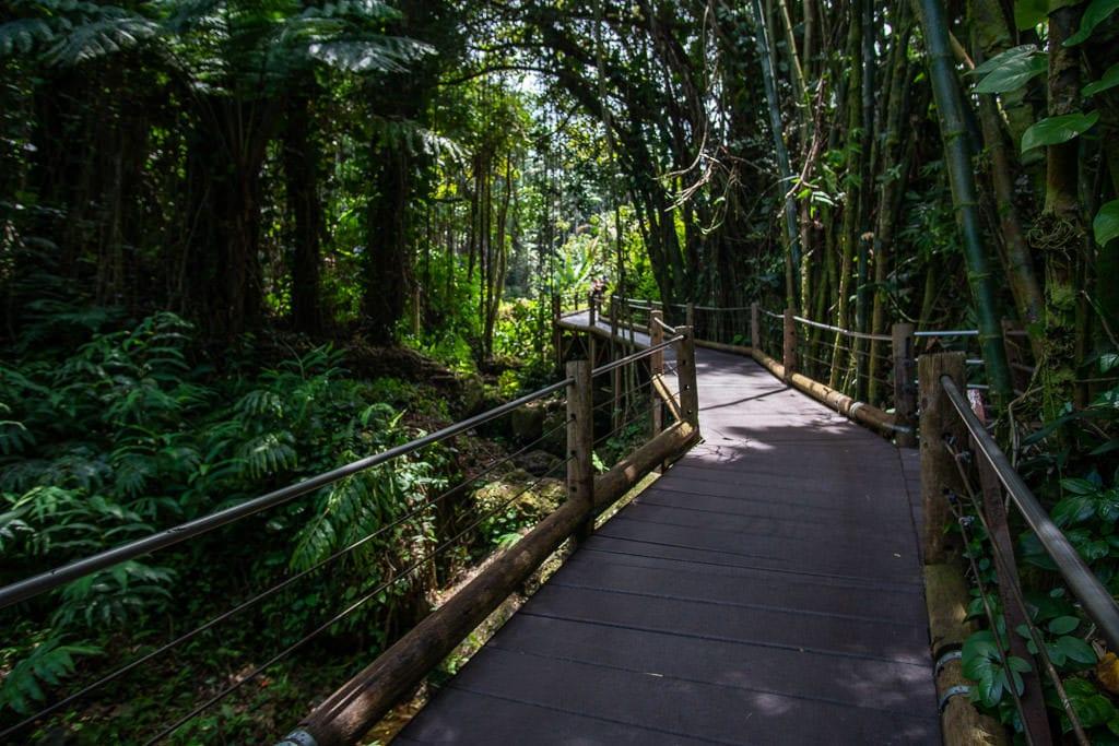 hawaii tropical botanical garden hilo