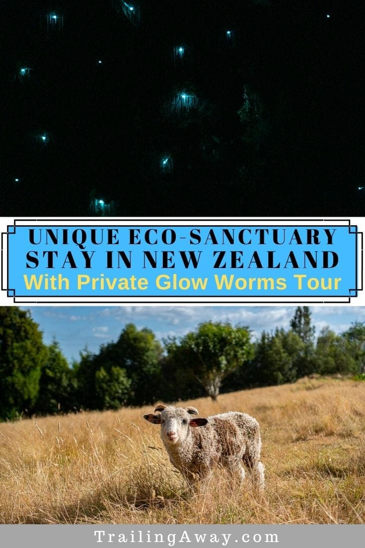 Private New Zealand Glow Worms Tour with Unique Eco-Sanctuary Stay