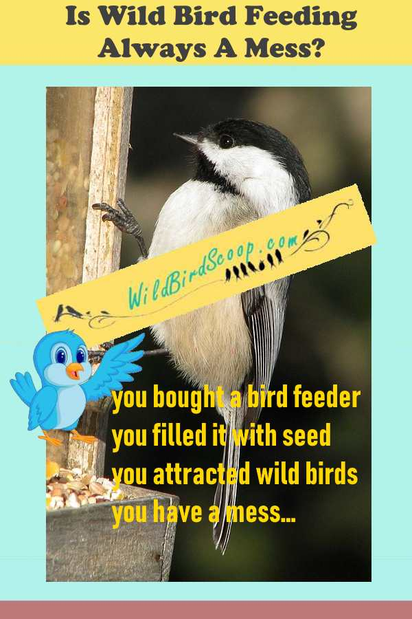 "A picture of a bird at a bird feeder. The heading reads ""is wild bird feeding always a mess?"""
