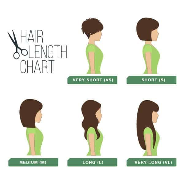 Hair length chart side view. Vector.