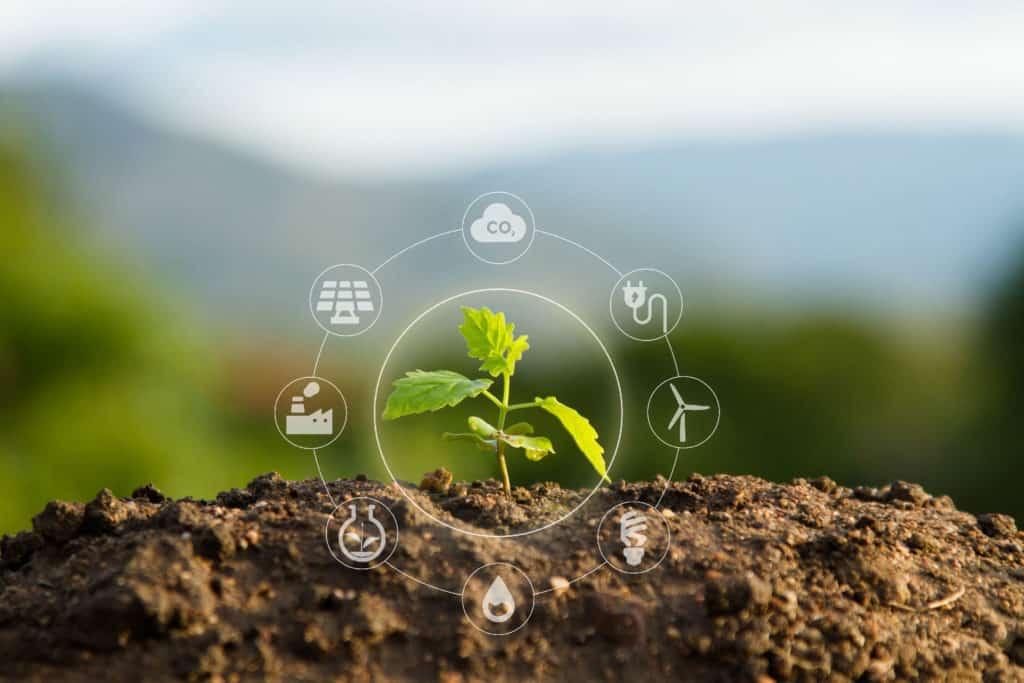 Sustainability-image-plant-with-icons