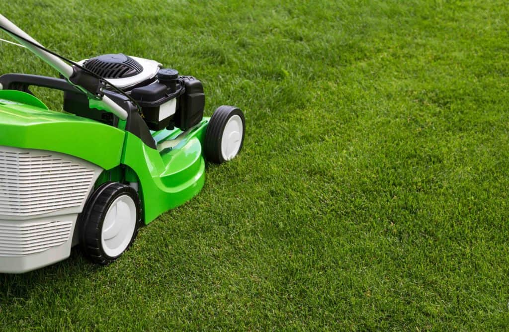 Mowing green grass