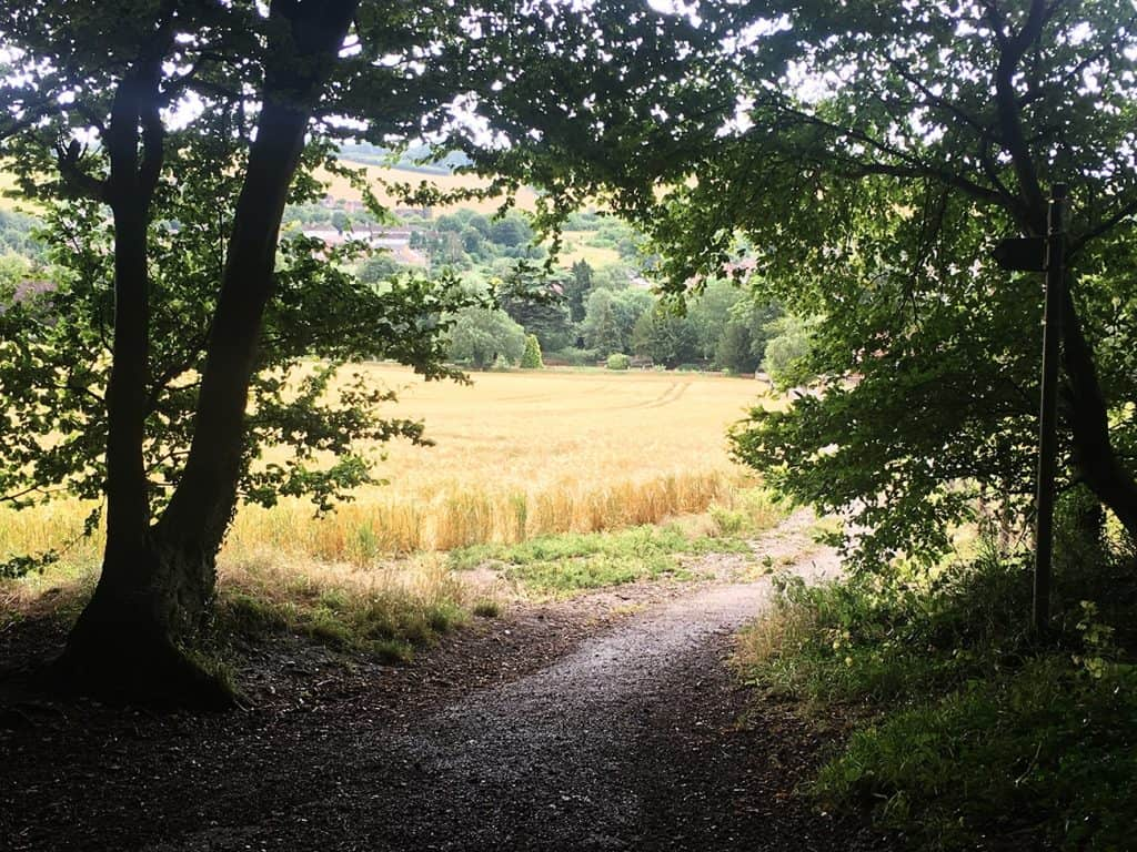Old Amersham: the field you walk by after passing the wood