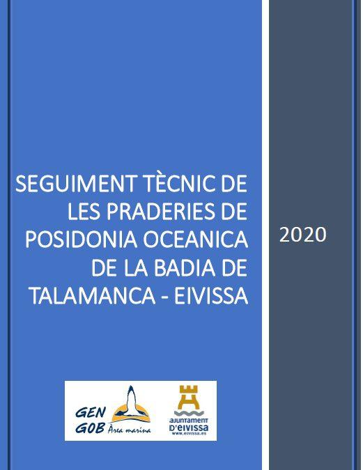 Informe Posidonia Talamanca 2020