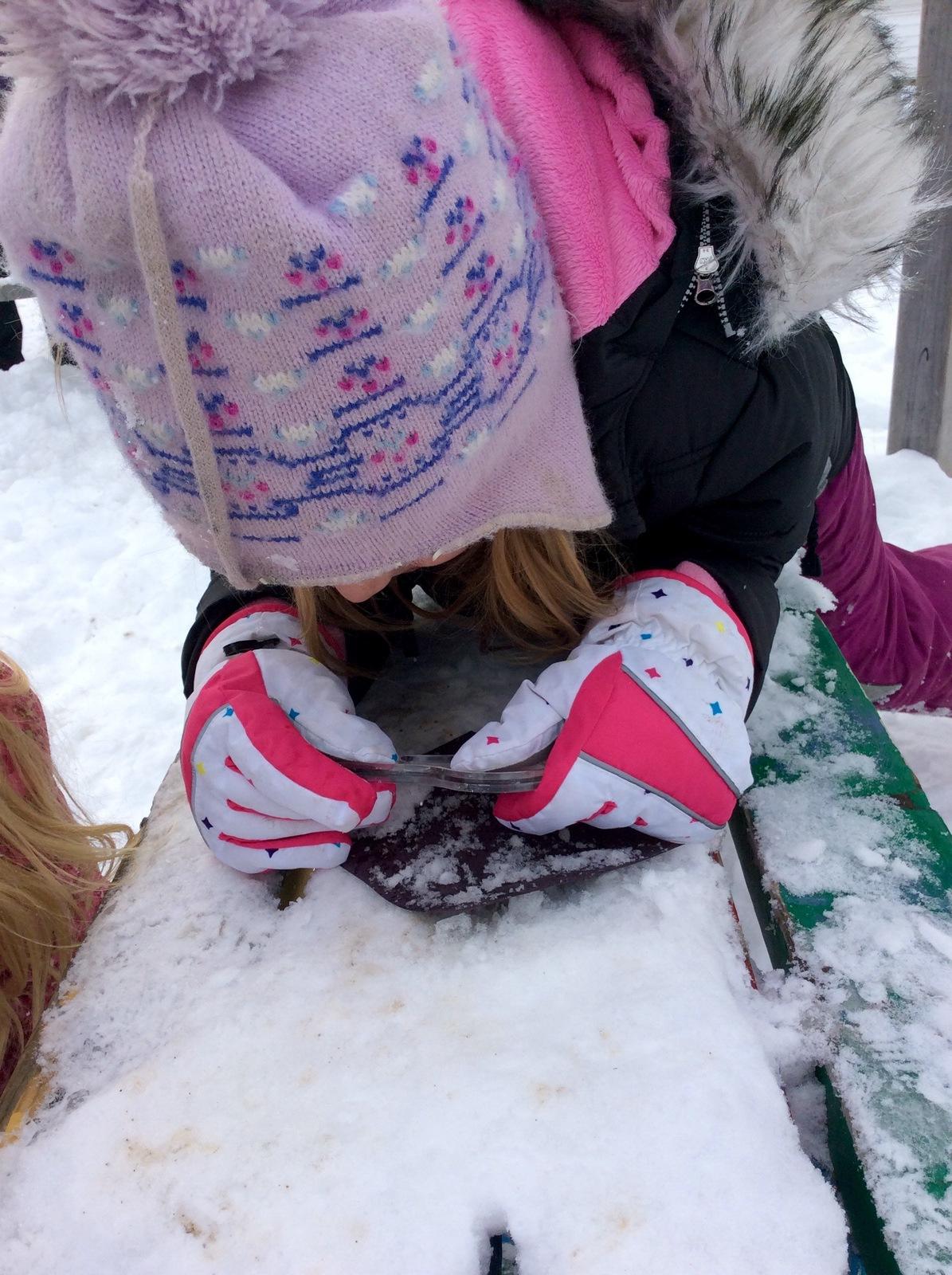 Studying Snow Crystals WinterKids Teachers Sharing Series5