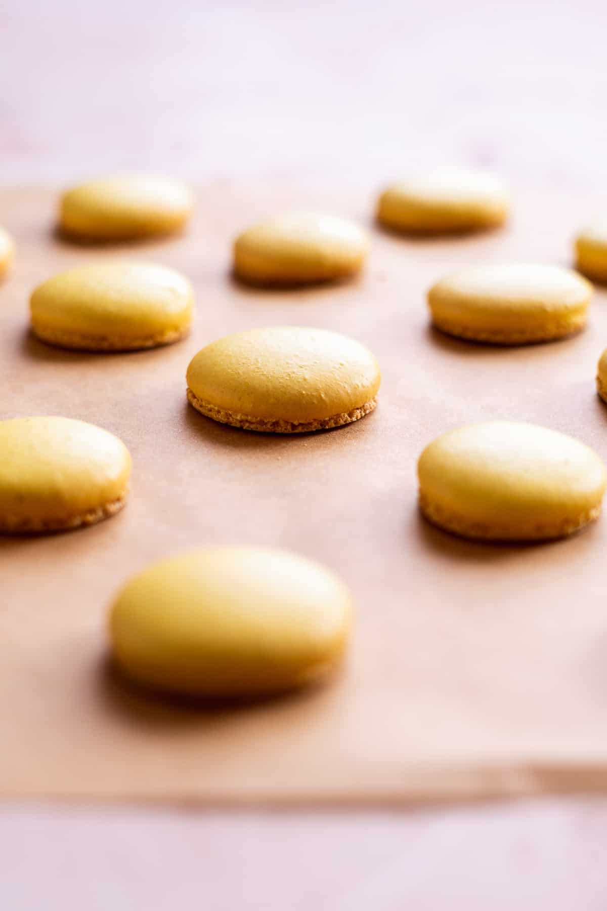 Image of macaron shells baked on parchment paper.