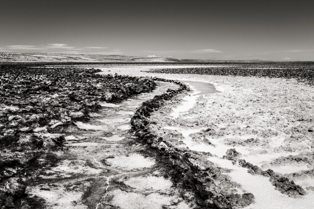 S-curved pathway at Laguna Baltinache in black and white