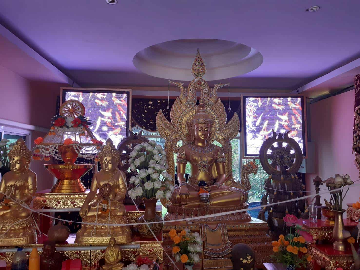 p4-indoor-led-screen-temple