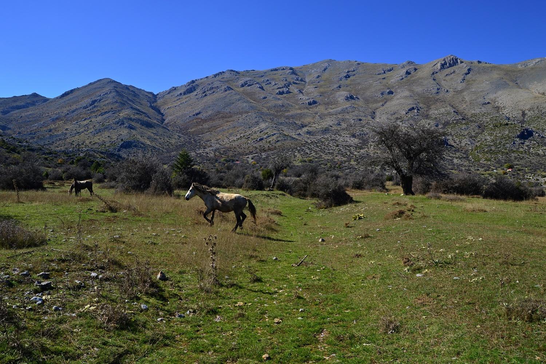 Starting our hike to Mount Kyllini from Ziria Ski Center