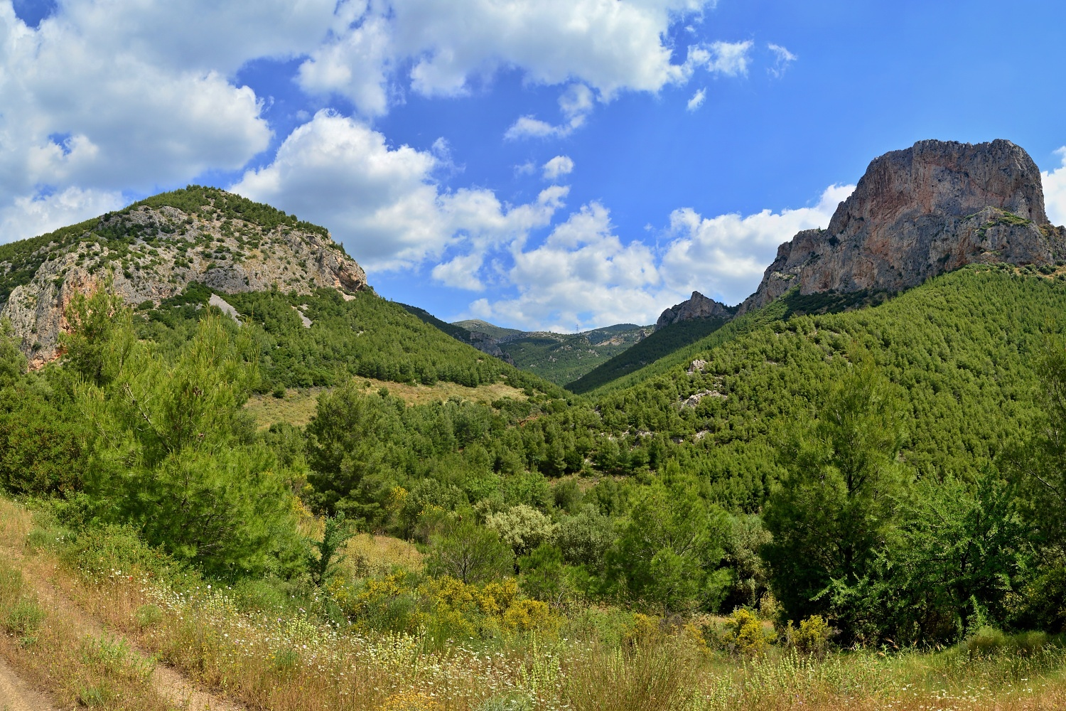 Theodora Valley, Parnitha