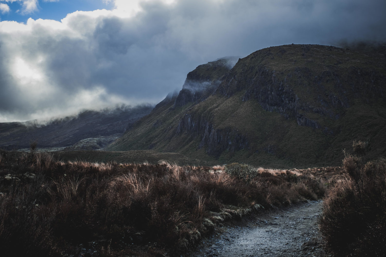 Wolkenverhangene Hügel in Tussock-Graslandschaft