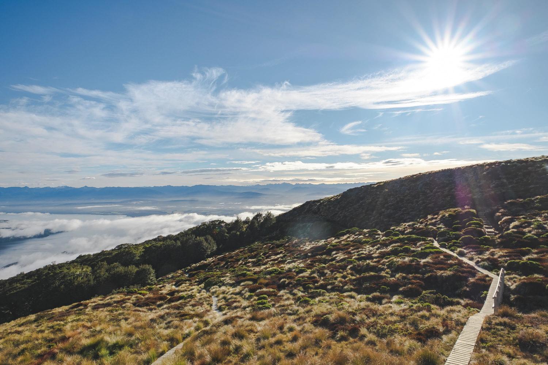 Wanderweg durch Tussock Graslandschaft mit Sonne am Himmel