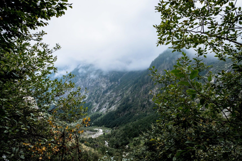Bäume geben zwischen den Blättern den Blick ins Val Bavona frei