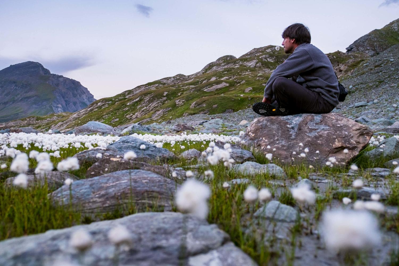 Christopher Püschel sitzt auf einem Stein zwischen Wollgras