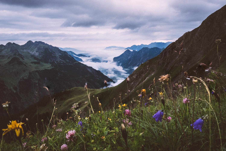 Bergwiese mit Blick auf das Tal hinter Oberstdorf