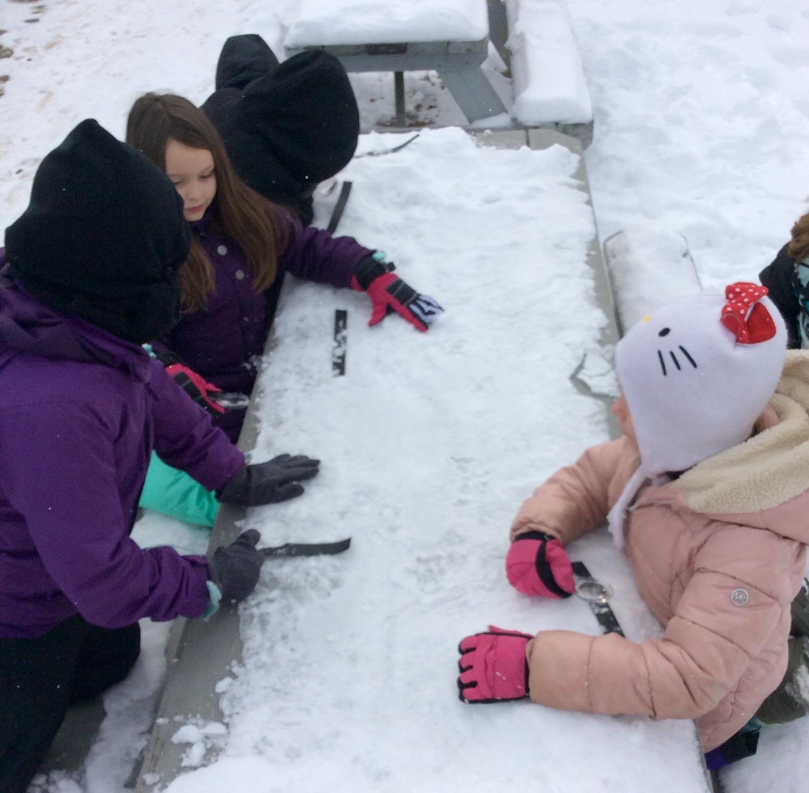 Studying Snow Crystals WinterKids Teachers Sharing Series6