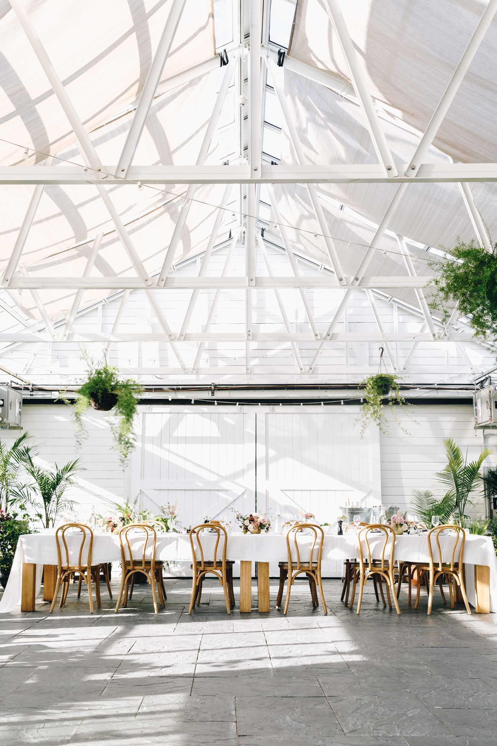 dinner table in an open greenhouse