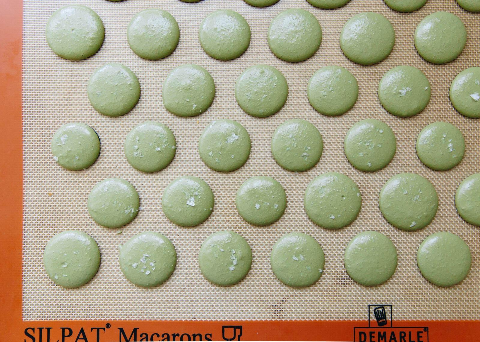 Pistachio macarons with a white chocolate pistachio ganache. Zomg.