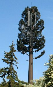 Antennes cachées dans un arbre