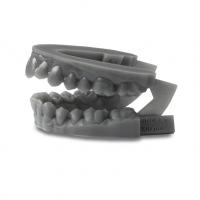 Dental-Draft-V2-sample-образец-челюсть
