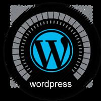 wordpress dinamik site