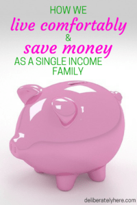 How We Live Comfortably and Save Money as a Single Income Family and How You Can, Too