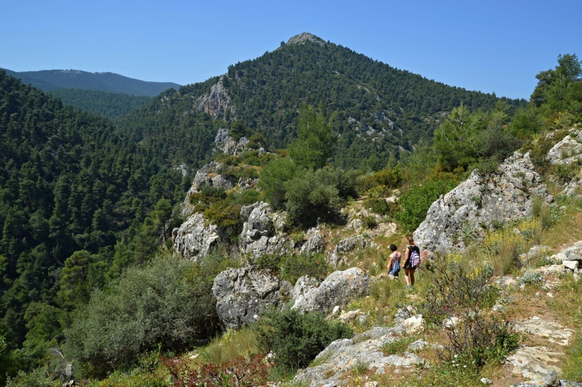 Hiking to Agia Marina on Mount Parnitha